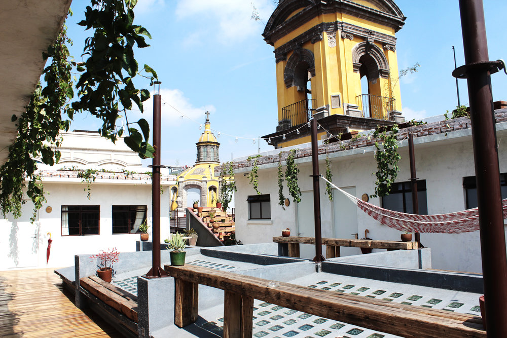 mexico city hotels hammock rooftop chaya bnb wave provocateur