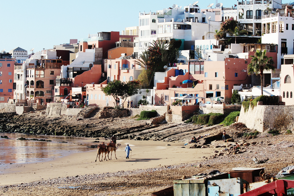 taghazout surf town morocco wave provocateur camels on beach
