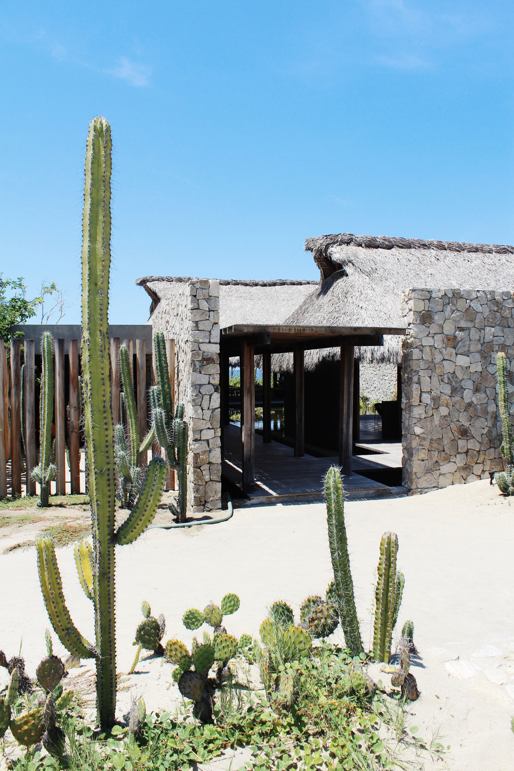 entrance hotel escondido luxury cactus mexico wave provocateur