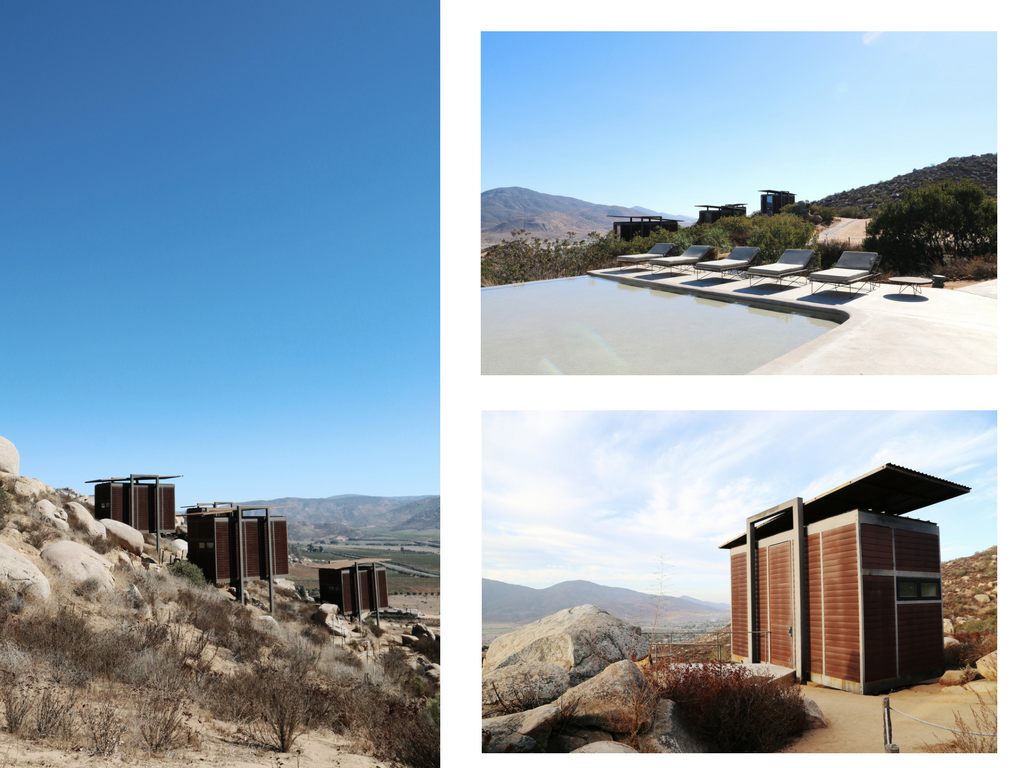 the wave provocateur hotel encuentro guadalupe mexico winery
