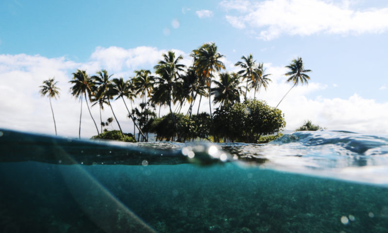 the wave provocateur surfing Tahiti french Polynesia